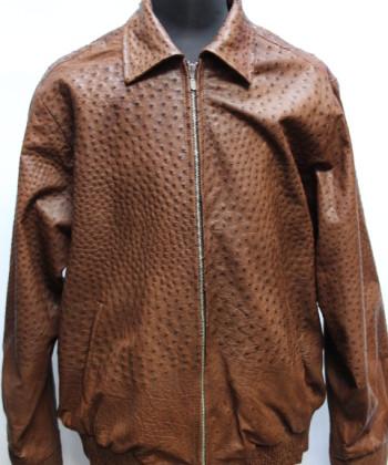 Ostriches jacket skin
